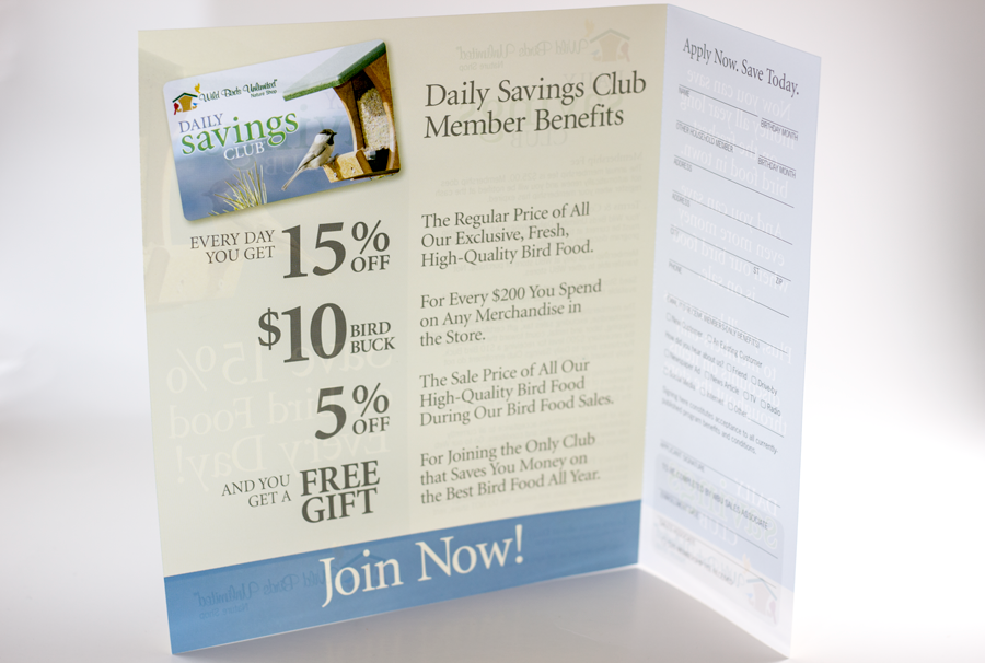 Company Promotional Flyer and Promotion Tear Off - 4 Color